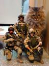Cat Soldiers
